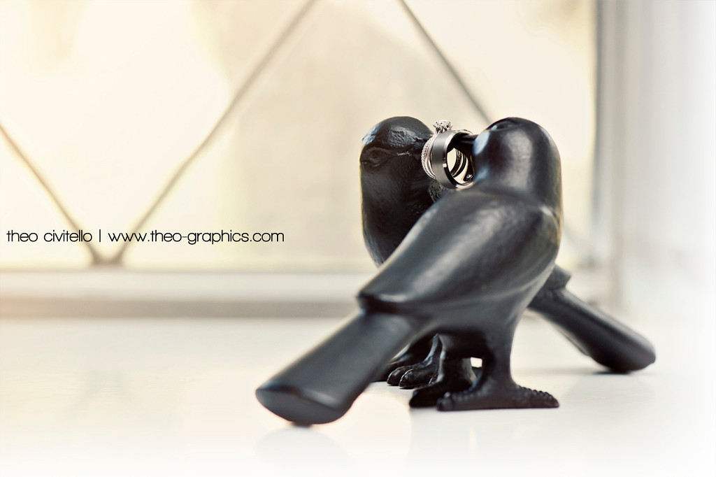 IMAGE: http://civitello.smugmug.com/Weddings/John/i-d896MxW/0/XL/Birds-and-Rings-XL.jpg